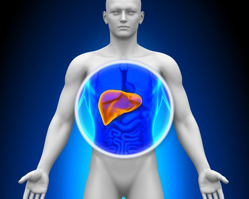 What is Liver Disease?