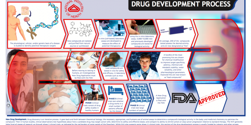 A Deeper Look at The Drug Development Process